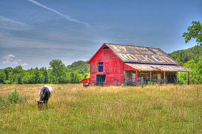 Photograph - The Pasture by David Troxel