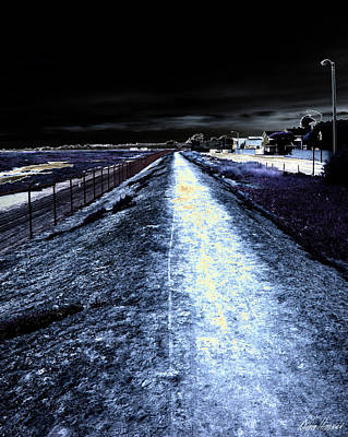 Photograph - The Path by Diana Haronis