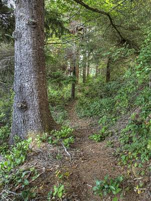Photograph - The Path by HW Kateley