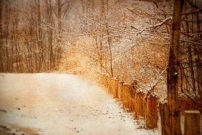 The Path Less Traveled Original by Mary Timman