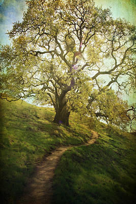 The Path To Brighter Days Art Print by Laurie Search