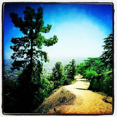 Hollywood Wall Art - Photograph - The Path by Torgeir Ensrud