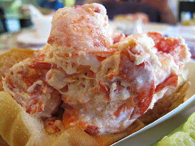 Photograph - The Perfect Lobster Roll by Colleen Rugg