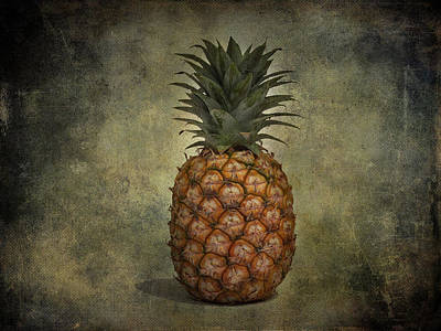 The Pineapple  Art Print by Jerry Cordeiro