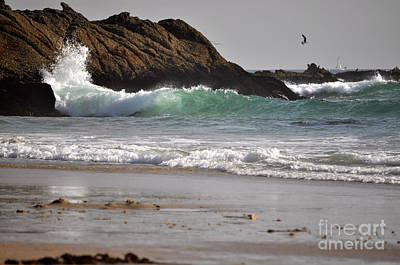 Art Print featuring the photograph The Point by Johanne Peale