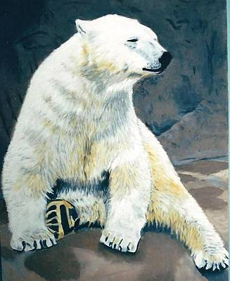 The Polar Bear Art Print by Terry Forrest