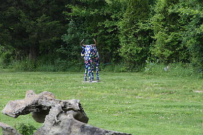 Photograph - The Psychedelic Cow by Paul SEQUENCE Ferguson             sequence dot net