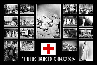 Animal Watercolors Juan Bosco - The Red Cross by Andrew Fare