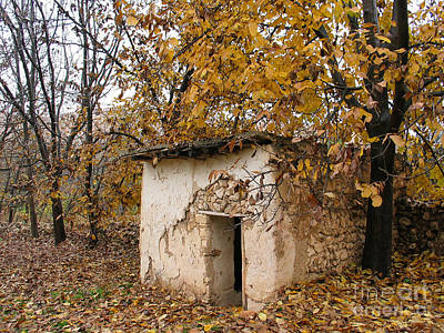 Photograph - The Remote Autumn Hut by Issam Hajjar