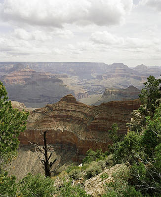 Photograph - The Rim Of The Grand Canyon by M K Miller