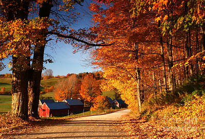 The Road To The Jenne Farm Art Print by Butch Lombardi