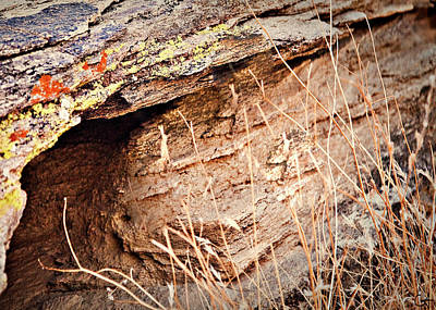 The Rock Facing Art Print by Gilbert Artiaga