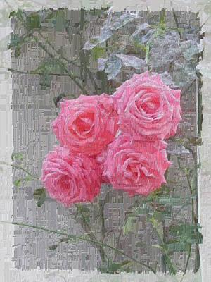 Roses Bushes Digital Art - The Rose 1 by Tim Allen