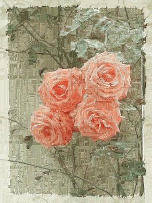 Roses Bushes Digital Art - The Rose 2 by Tim Allen