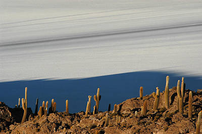The Salar De Uyuni. Republic Of Bolivia. Art Print