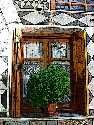 Photograph - The Scent Of Basil - El Aroma De La Albahaca  by Rezzan Erguvan-Onal