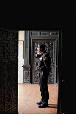 Photograph - The Security Guard by Lorraine Devon Wilke