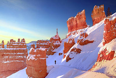 The Sentinal Bryce Canyon Art Print by (C) Rob Little