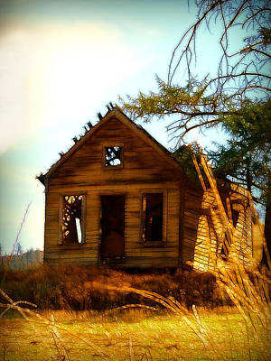 Photograph - The Shack by Cindy Wright