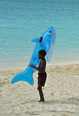 Photograph - The Shark Hunter by Li Newton