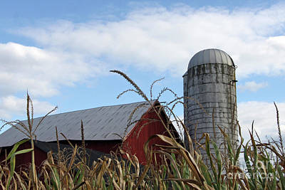 Art Print featuring the photograph The Silo by Denise Pohl