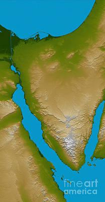 Aqaba Photograph - The Sinai Peninsula by Stocktrek Images