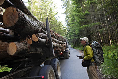 Transportation Of Goods Photograph - The Size Of A Truckload Of Redwood Logs by Michael Christopher Brown