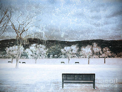 Summerland Photograph - The Snow Storm by Tara Turner
