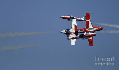 Photograph - The Snowbirds Fourplay by Bob Christopher