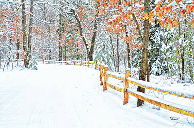Photograph - The Snowy Road Home by Peg Runyan