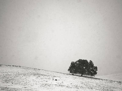 Photograph - The Sound Of Falling Snow by Alexander Kunz