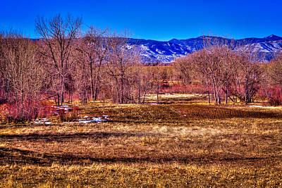 Duck Photograph - The South Platte Park Landscape by David Patterson