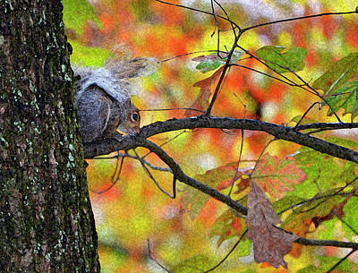 Art Print featuring the photograph The Squirrel Umbrella by Paul Mashburn