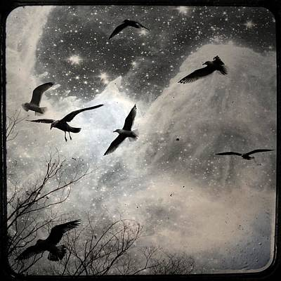 The Stars Birds And Clouds Art Print by Gothicrow Images