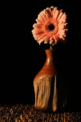 Photograph - The Still Life by JC Findley