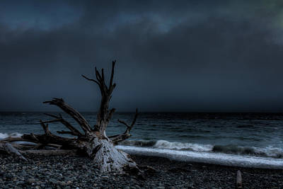 The Storm Art Print by Matt Dobson