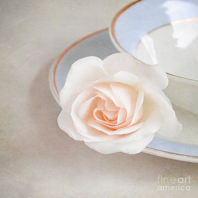 The Sweetest Rose Art Print by Lyn Randle
