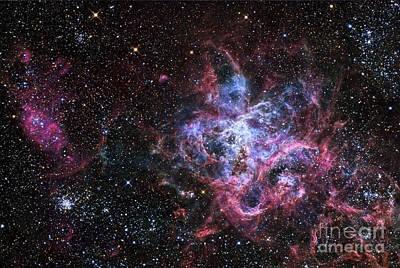 Moody Trees - The Tarantula Nebula, A Star Forming by R Jay GaBany