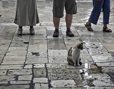 Dubrovnik Croatia Photograph - The Tourists by Madeline Ellis