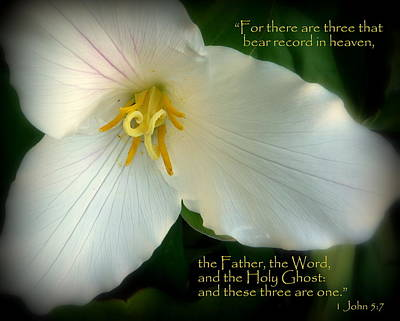 Photograph - The Trinity Scripture Art by Cindy Wright