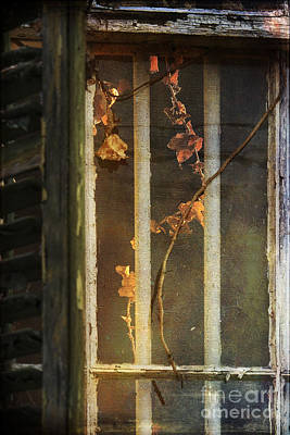 The Vine Inside Art Print by Sari Sauls