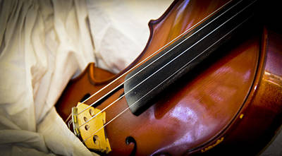 Photograph - The Violin by Carolyn Marshall