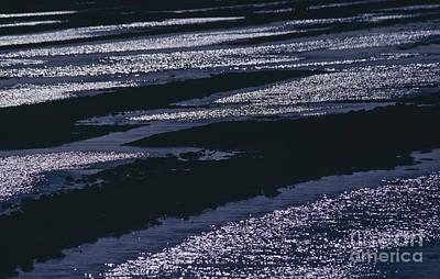The Wadden Sea Art Print by Heiko Koehrer-Wagner