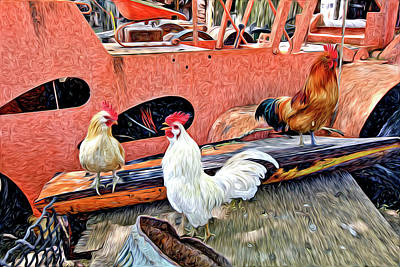 Photograph - The Walk Of The Cock by James Steele
