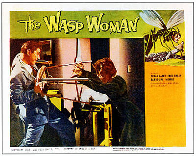1950s Movies Photograph - The Wasp Woman, From Left Anthony by Everett
