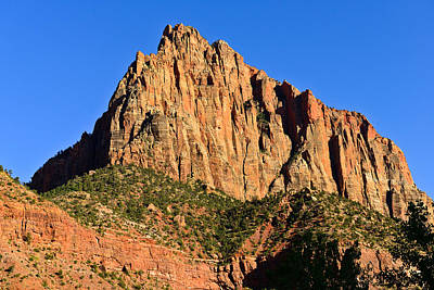 Zion National Park Photograph - The Watchman by Greg Norrell