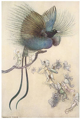 The Water Babies The Most Beuatiful Bird Of Paradise Art Print by Warwick Goble