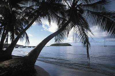 Vieques Photograph - The Waterfront At Esperanza On Vieques by Scott S. Warren
