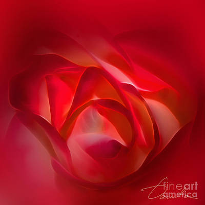 Photograph - The Wave Of Redness by Danuta Bennett