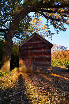 Photograph - The Weathered Shed by Sue Stefanowicz